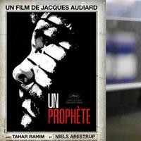 2010_cinema_1